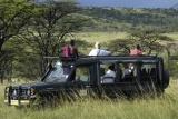 Kicheche-bush-camp-game-drive-zebra
