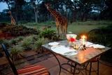 Giraffe manor - dining alfresco