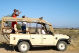 Game drive at  Elephant Bedroom Camp