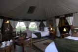 Elephant bedroom camp twin tent