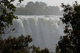 Victoria Falls framed by trees
