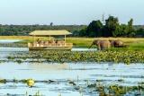 Skimmer River Safari, Chobe Savanna Lodge