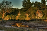 Savute Safari Lodge Waterhole View
