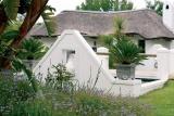 Knysna hollow garden 2