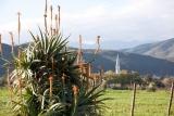 Garden view at berluda