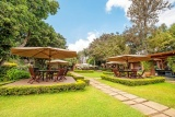 Gardens at arusha coffee lounge