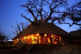 Tarangire Treetops by night