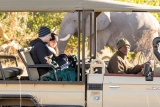 Elephant on Game Drive, Rra Dinare Camp, Botswana