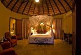 Elephant plains suite