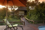Camp Shonga pool area surrounded by African bushveld