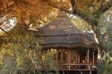 Imbali Safari Lodge in the Kruger National Park