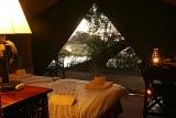 Pom Pom Camp tent view