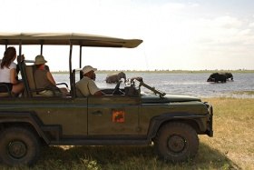 Muchenje Lodge safari