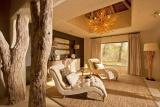 Bush lodge - mandleve suite lounge