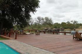 Gomo Swimming Deck