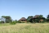 nThambo Tree Houses