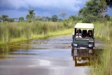 Nxabega okavango tented camp watery game drive