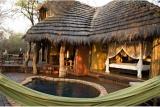 Jaci's Safari Lodge private plunge pool and viewing deck