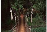 Riverine wooden walkway at Jaci's Safari Lodge, Madikwe Game Reserve