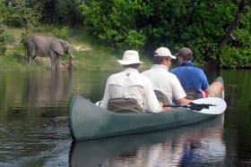 Savuti camp game viewing by canoe