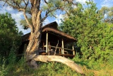 Savuti luxury safari tent
