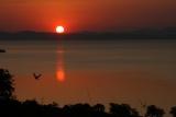 Bumi Hills spectacular sunset