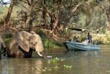 Old Mondoro boat safari