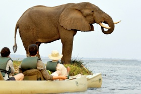 Chiawa elephant by canoe