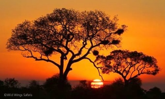 Another amazing African sunset