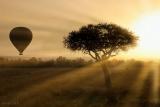 Hot air ballooning at dawn, Amboseli, Kenya