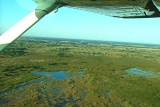Okavango from the air