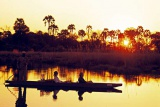 Mokoros at sunset in Okavango Delta