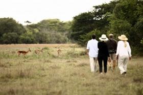 Bush walk at Phinda Game Reserve