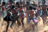 Zulu dancers at phinda game reserve