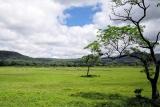 Arusha national park landscape