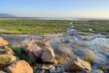 Lake manyara view