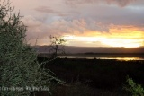 Sunset view over Ngorongoro Crater