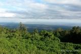 Karatu plantations