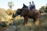 Botswana vicfalls june2011 461