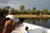Photographic safari Lake Kariba