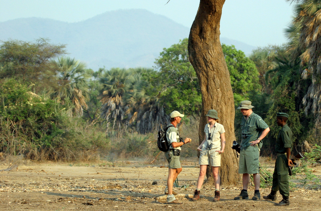 Lower Zambezi National Park | Zambia