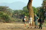 Game walk lower zambezi