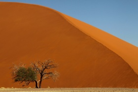 Burnt-orange dunes of Sossusvlei