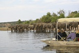 Chobe Game Cruise