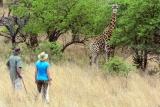 Isibindi zulu lodge walking safari