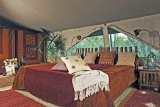 Double room at Kicheche Laikipia