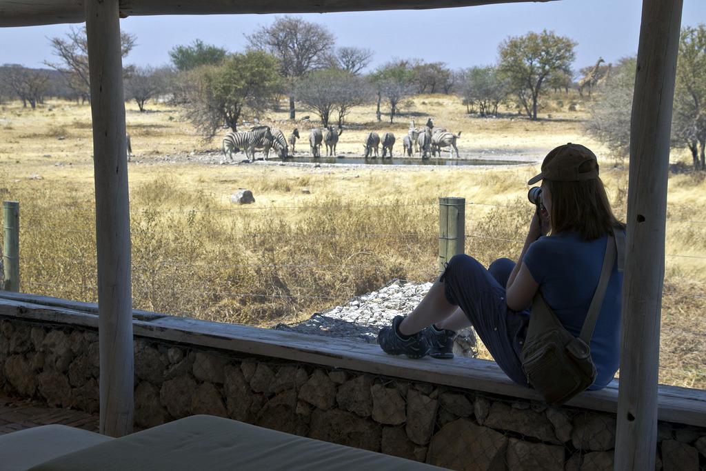 Watching Waterhole Visitors, Andersson's Camp, Etosha, Namibia
