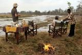 Mwaleshi - bush breakfast