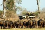 Remote Africa 4x4 safaris