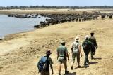 Remote Africa walking safaris
